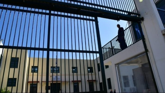 Κορυδαλλός φυλακών